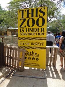 5 e,bezoek aan de dierentuin,4-11